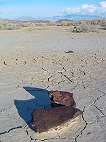 cluster of Nevada meteorite fragments in-situ