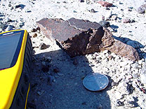 NEW Nevada meteorite in-situ